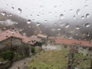 Des de la finestra, esperant la Primavera