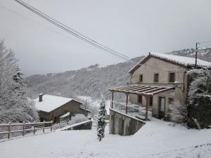 Can Jordi després de la nevada